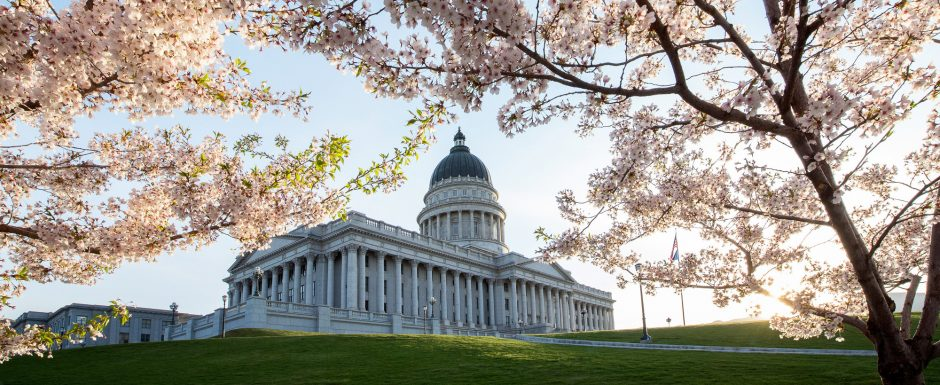 Cherry blossoms_Utah State Capitol_Matt Morgan-2